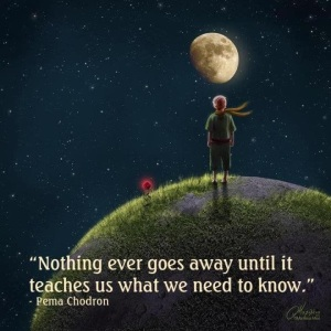 Nothing Goes Away... Pema